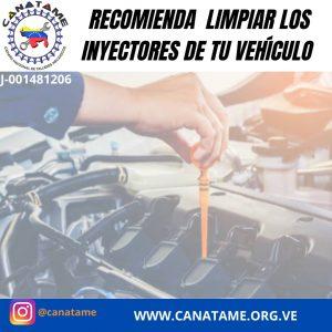 CANATIP (3): LIMPIEZA DE INYECTORES